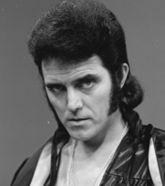 Tributes have been paid to the singer Alvin Stardust
